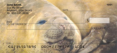 Elephant Seals and Sea Lions Personal Checks - 3