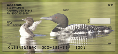 A Loon-ee Family Personal Checks - 1
