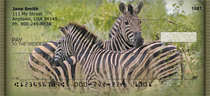 Zebra In Wild Personal Checks