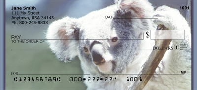 Koala Bears Personal Checks - 2