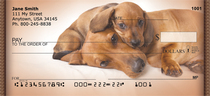 Dachshund Puppies Personal Checks