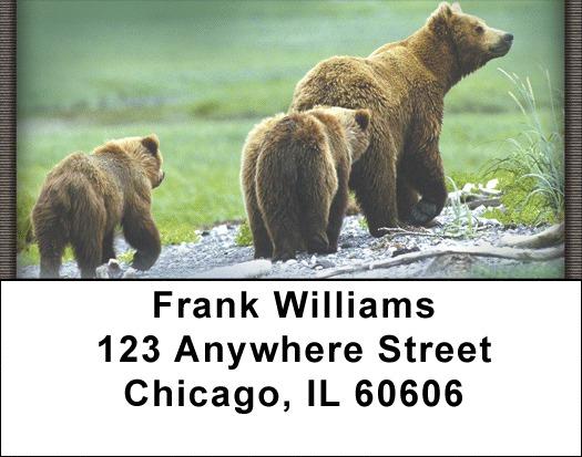 black bear address labels 50 below bank prices on black bear