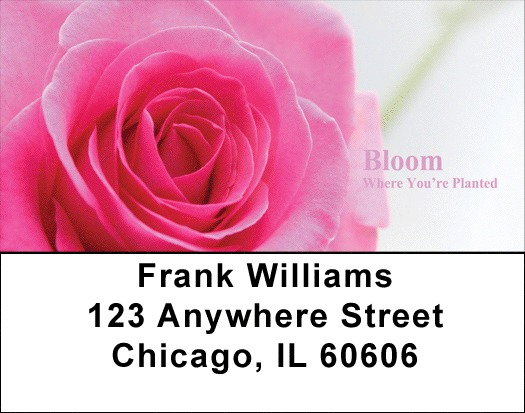 Bloom Where You're Planted Address Labels