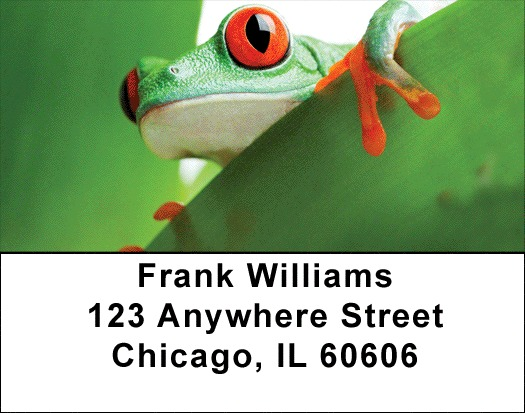 It's A Froggy Frog World Address Labels - 1