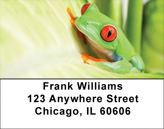 It's A Froggy Frog World Address Labels - 2