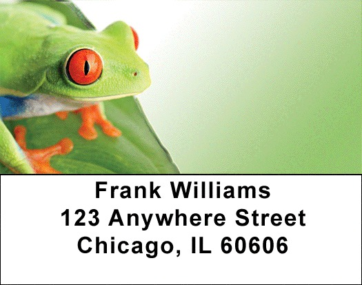 It's A Froggy Frog World Address Labels - 4