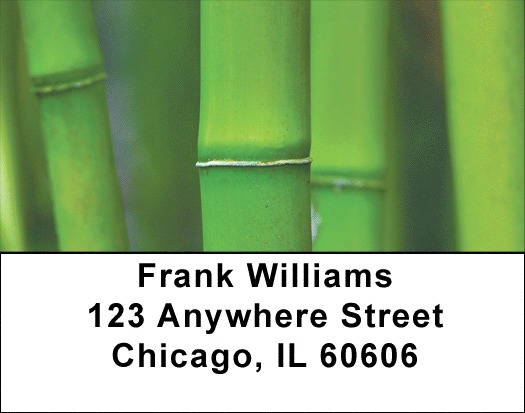 Bamboo Address Labels