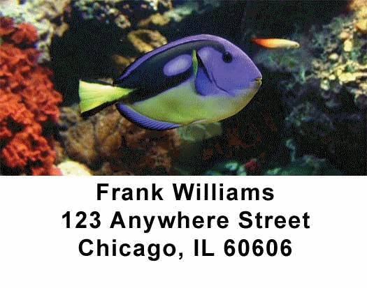 Tropical Fish Address Labels - 2