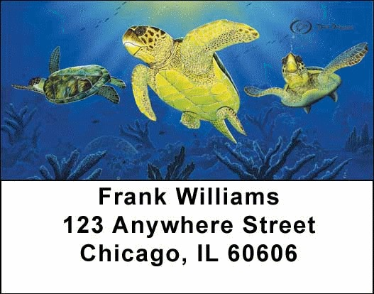 Sea Turtles Address Labels - 3