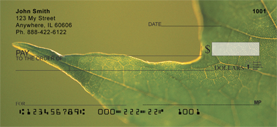 Examined Leaves Checks - 2