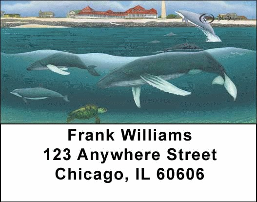 Whales and Lighthouse Address Labels - 2