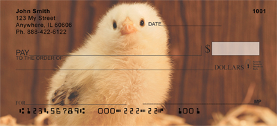 Baby Chicks Checks - 4