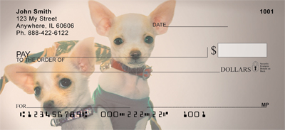 Chihuahua With Attitude Checks