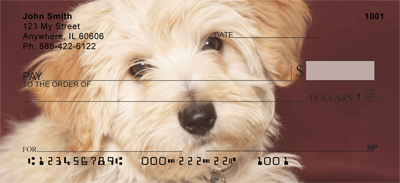 Adorable Havanese Personal Checks