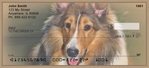 Loyal Collies Checks