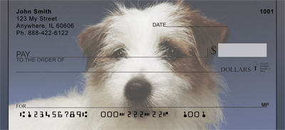 Jack Russell Terrier Portrait Checks - 1