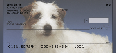 Jack Russell Terrier Portrait Checks - 3