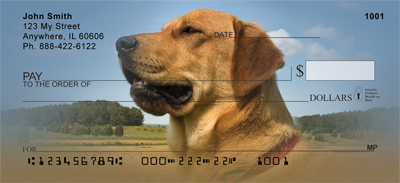 Yellow Labrador Portraits Checks - 3