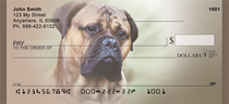 Massive Mastiffs Checks