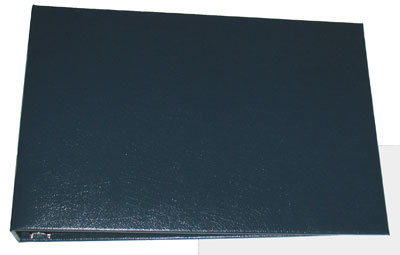 Blue Business 7 Ring Check Binder  - 1