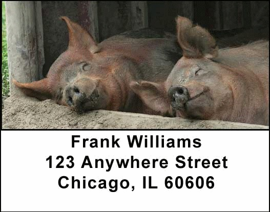 Farm Animals Address Labels - 1