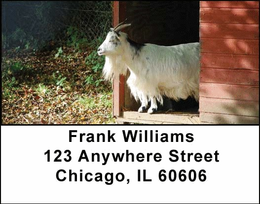 Farm Animals Address Labels - 2