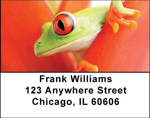 Frogs Address Labels - 1