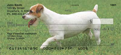 Jack Russell Terriers Checks - 2