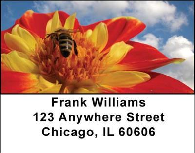 Bees Address Labels - 2