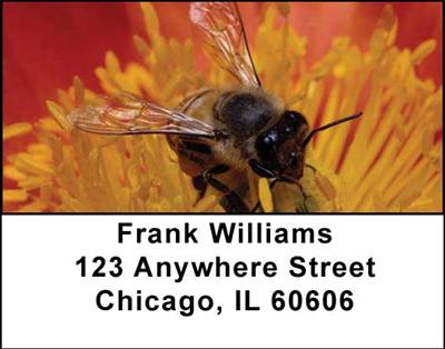 Bees Address Labels - 4