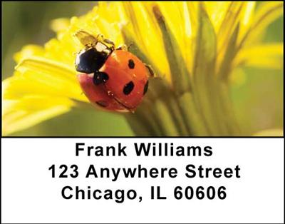 Ladybugs Address Labels - 2
