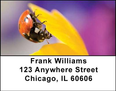 Ladybugs Address Labels - 3