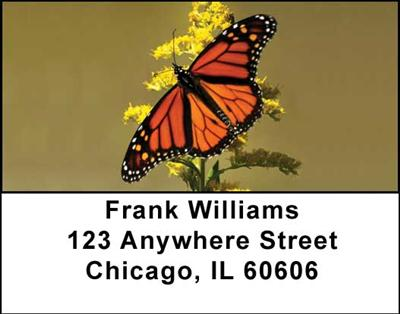 Monarch Butterflies Address Labels - 2