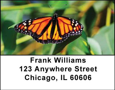 Monarch Butterflies Address Labels - 3
