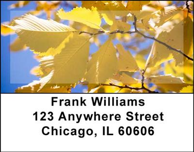 Foliage Address Labels - 1