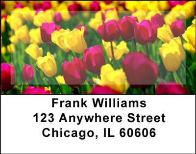 Tulips Address Labels - 1
