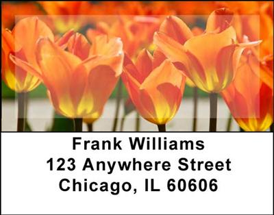 Tulips Address Labels - 2
