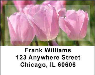 Tulips Address Labels - 3