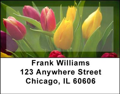 Tulips Address Labels - 4