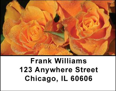 Roses Address Labels - 1