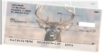 Big Horned Buck Deers Side Tear Checks