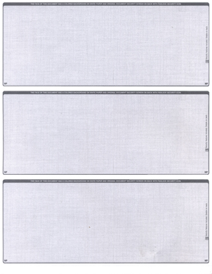 Grey Safety Blank 3 Per Page Laser Checks - 1