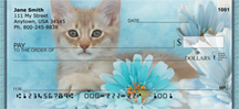 House Cats, the Kittens Personal Checks