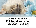 Flowers & Cats Address Labels
