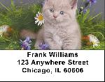 Flowers & Felines Address Labels