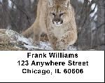 Cougar Address Labels