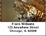 Leopard Watch Address Labels